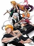 Bleach the Blade of Fate art 1.jpg